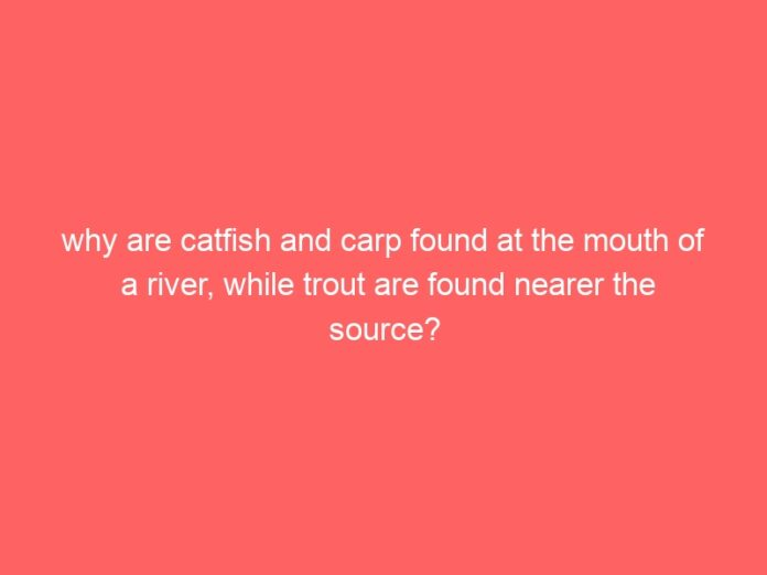 why are catfish and carp found at the mouth of a river while trout are found nearer the source 1395